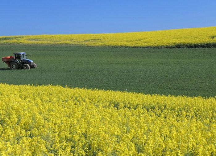 L'impresa familiare agricola, la famiglia coltivatrice e la società semplice agricola