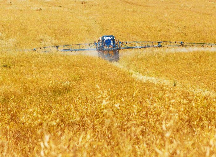 Esercizio del riscatto agrario da parte di una pluralità di confinanti