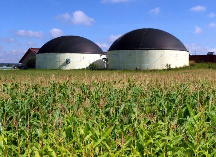 La fallibilità dell'impresa agroenergetica